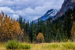 Taken from along the Ice Fields Parkwayl Banff National Park, Alberta, Canada. Fall colours and a view of the mountains offer a great stop along the way Royalty Free Stock Photos