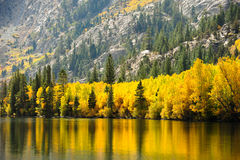 Fall Comes To The Eastern Sierra's Stock Photography