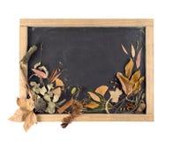 Fall composition blackboard leaf autumn vintage Stock Image