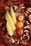Fall composition for thanksgiving day with corn,apple,mushrooms and pumpkin. Fall composition for thanksgiving day with corn,apple,mushrooms and pumpkin stock photos