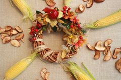Fall composition for thanksgiving day with corn,apple,mushrooms and pumpkin. Fall composition for thanksgiving day with corn,apple,mushrooms and pumpkin royalty free stock photo