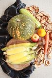 Fall composition for thanksgiving day with corn,apple,mushrooms and pumpkin. royalty free stock image