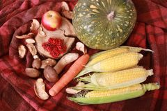 Fall composition for thanksgiving day with corn,apple,mushrooms and pumpkin. On red textile stock photo