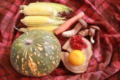 Fall composition for thanksgiving day with corn,apple,mushrooms and pumpkin. Fall composition for thanksgiving day with corn,apple,mushrooms and pumpkin on red royalty free stock photo
