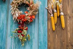Fall composition for thanksgiving day with corns and wreath royalty free stock photography