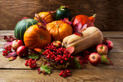Fall concept with pumpkins, apples and berries Royalty Free Stock Images
