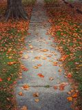 Fall Concrete Path With Orange Leaves Stock Photo