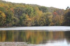 Fall in Connecticut Stockbild