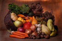 Fall cornucopia. Autumn cornucopia - symbol of food and abundance royalty free stock photos
