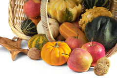 Fall cornucopia Royalty Free Stock Photos