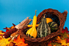Fall Cornucopia Royalty Free Stock Photography