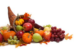Free Fall Cornucopia On A White Back Ground Royalty Free Stock Photography - 11434937
