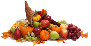 Fall cornucopia on a White back ground royalty free stock photo