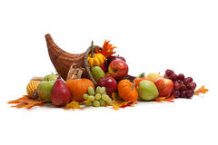 Fall cornucopia on a White back ground Royalty Free Stock Photography
