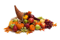 Fall cornucopia on a White back ground Royalty Free Stock Photos