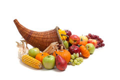Fall cornucopia on a White back ground Royalty Free Stock Image
