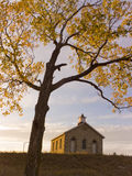 Fall Cottonwood Tree and Limestone One Room School. Golden sunset and late October, yellow cottonwood leaves surrounds a historical one room schoolhouse in the Royalty Free Stock Images