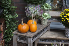 Fall at country house. Royalty Free Stock Images