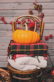Fall at country house. Seasonal decorations with pumpkins, fresh apples and flowers. Autumn harvest Royalty Free Stock Image