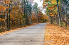 Fall Country Road. Fall foliage along a country road Royalty Free Stock Image