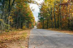 Fall on a country road. Fall foliage along a country road Stock Photography