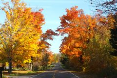 Fall Country Road in Michigan. I took this picture on Oct. 17, 2014, in my southwestern Michigan neighborhood.  Fall is at it's peak right now, and next week is Royalty Free Stock Photography