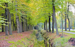 Fall in the countryside. From the Netherlands Stock Image