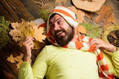 Fall cozy atmosphere. Fall and autumn season concept. Hipster wear knitted striped hat and scarf hold autumn leaves. Bouquet. Man bearded face lay on wooden stock photo