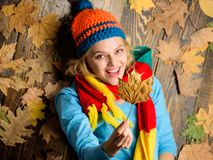 Fall cozy atmosphere. Girl cheerful face lay on wooden background with leaves top view. Fall and autumn season concept. Hipster woman knitted hat and scarf royalty free stock images