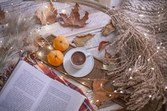 Fall cozy day with book stock photos