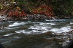 Fall creek. Near Aspen, Colorado Stock Image