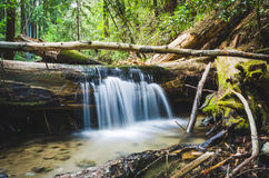 Fall Creek Waterfall Royalty Free Stock Photos