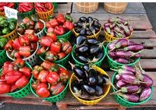 Fall crops Royalty Free Stock Photo