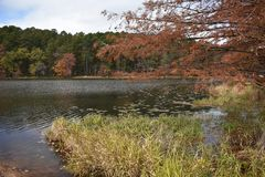 Fall at Daingerfield State Park in Daingerfield Texas Nov 25 2018. Took a drive to Daingerfield State Park in East Texas just to see the fall color stock photography
