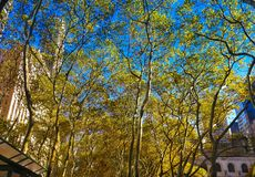 Fall day in Bryant Park NYC Stock Photography