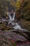 Fall in Bash Bish State Park - Vertical royalty free stock photography