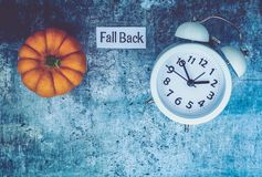 Fall Daylight Saving Time concept with white clock and flowers, flat lay. Blue slate royalty free stock image