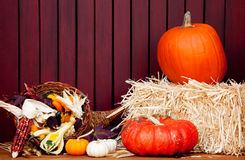 Fall Decor Stock Photo