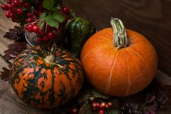 Fall decor with red berry and two pumpkins stock photo