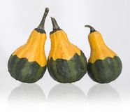 Fall decoration. Image of three gourds with clipping path Royalty Free Stock Photography