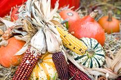 Fall Decoration Royalty Free Stock Images