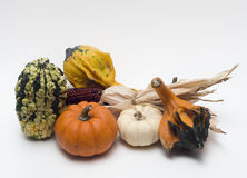 Fall decoration Stock Image