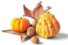 Fall decoration Stock Photo