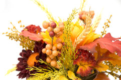 Fall Decoration. Close up Isolated Against White Background Royalty Free Stock Photo