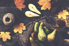 Fall decoration with pears, colorful leaves, pine cones and jute Stock Photography