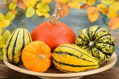 Fall decoration  with pumkin Stock Photo