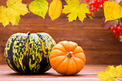 Fall decoration  with pumkin Stock Photo