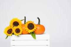 Fall decoration Royalty Free Stock Photography