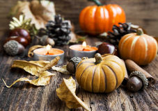 Fall Decoration.Pumpkins,Orange Candles,Cinnamon,Chestnuts and stock photography