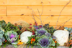 Fall decoration Stock Photography